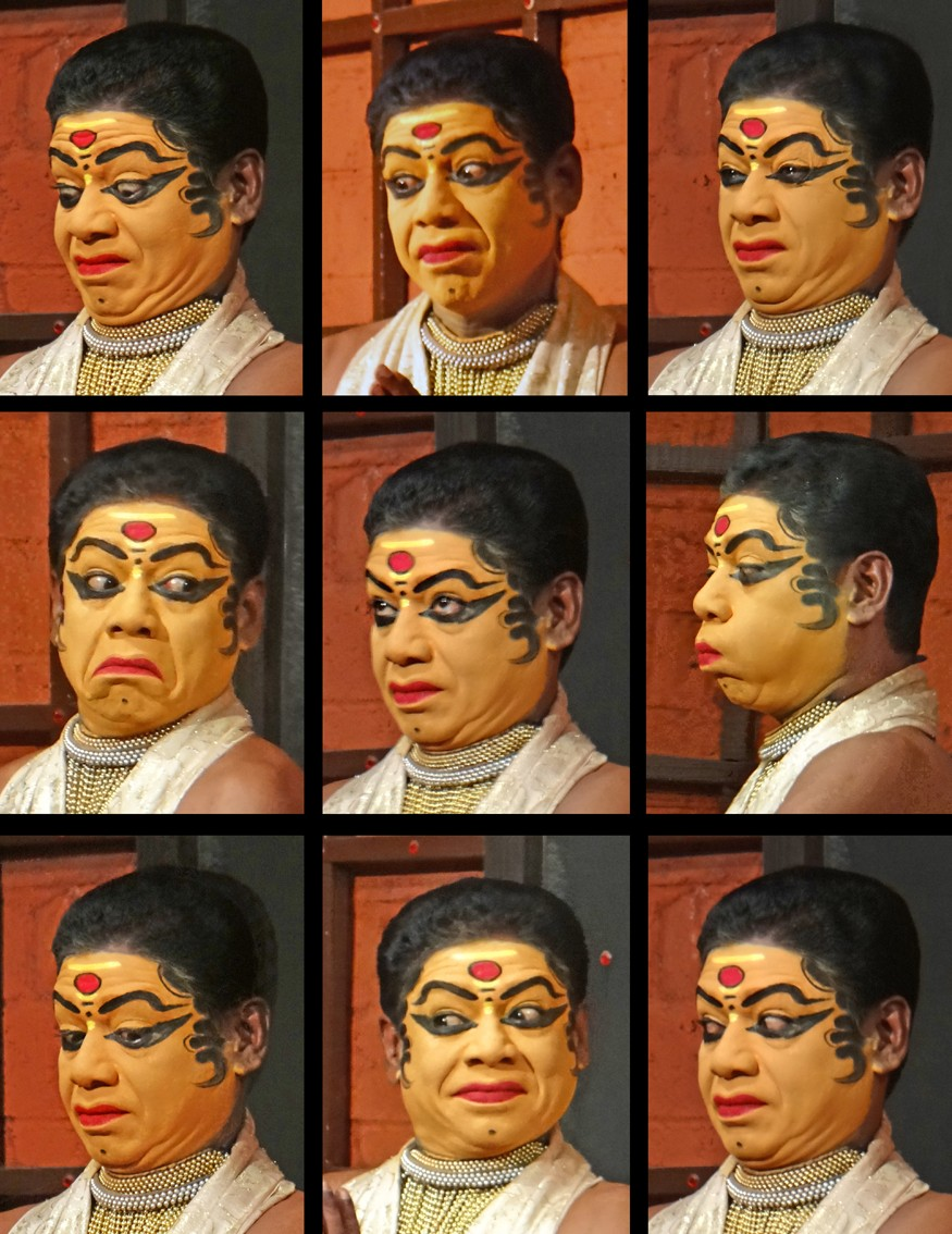 Gestures and Emotions in Kathakali